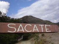Sacate