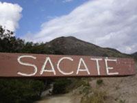 Sacate_5